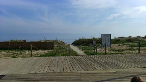 playa de las higuericas acceso