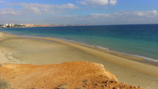playa mil palmeras con cabo roig al fondo