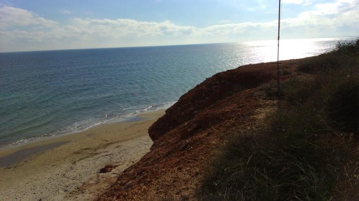 playa mil palmeras junto a cabo roig 3