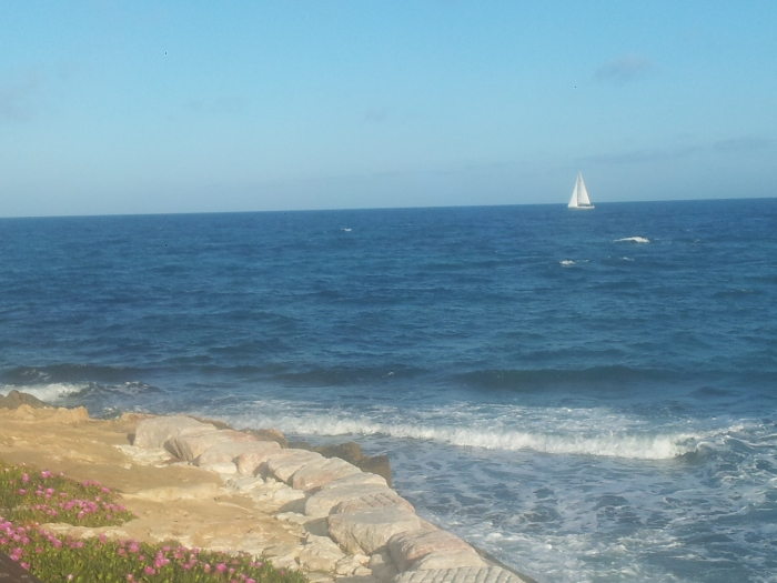 Velero junto a Punta Prima